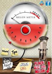 Melon Meter