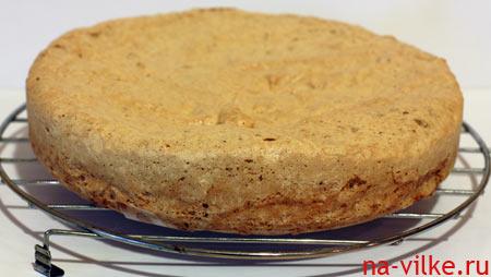 Корж для киевского торта
