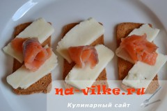 brinza-semga-4