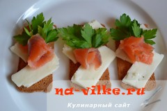brinza-semga-5