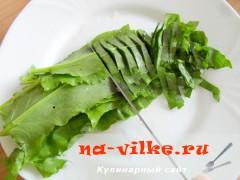 zeleniy-sup-pure-05