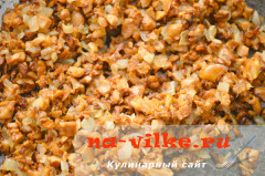 vishisuaz-s-lisichkami-04