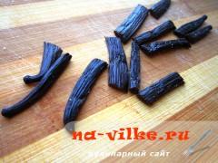 vanil-sahar-1