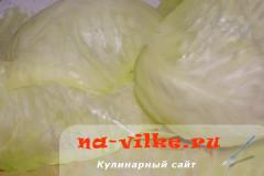 golubcy-v-multivarke-08