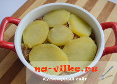 kartofel-sushenye-griby-13