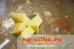 sup-guljash-07