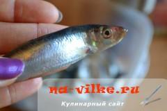 tulka-zharenaya-02