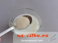 oladii-s-abrikosami-02