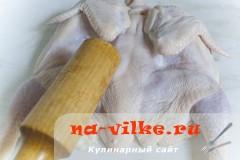 tcyplenok-tabaka-2