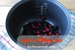 kisel-v-multivarke-2