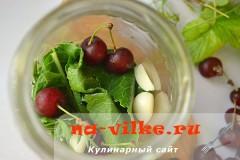 ogurcy-s-vishney-05