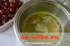 vishnja-krasnaja-smorodina-06
