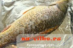 karp-s-kuskusom-14