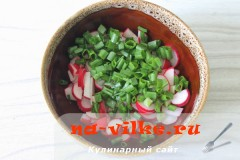salat-redis-3