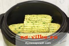 kukuruza-na-paru-5
