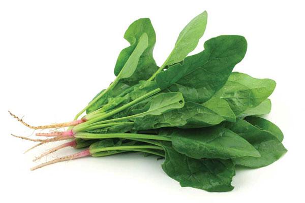 salat-03