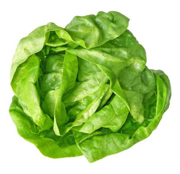 salat-11