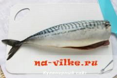 skumbria-v-folge-2
