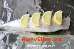 skumbria-v-folge-7