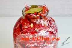 kapusta-so-svekloy-09