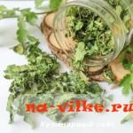 Сушим зелень кинзы в духовке