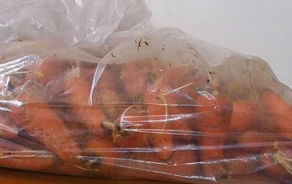 hranenie-morkovi-5
