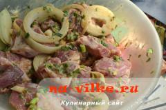 shashlyk-kivi-5