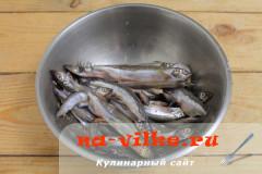 moyva-v-duhovke-2