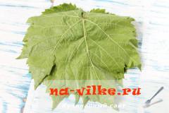 vinogradnie-listja-1
