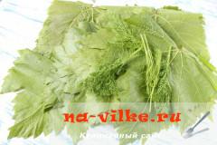 vinogradnie-listja-marinovannie-1
