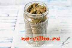 vinogradnie-listja-marinovannie-5