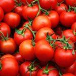 Длительное хранение свежих помидор