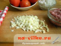 pomidory-farsh-02