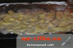 jabloki-v-duhovke-08