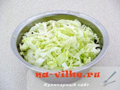 salat-ugodnik-03