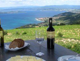 Гастрономический тур в Грецию