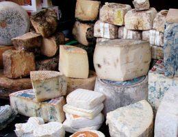 Какие бывают сорта и названия сыров с плесенью