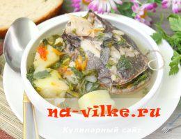 Рецепт вкусной ухи из головы и мяса сома