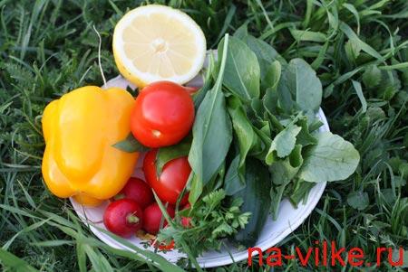 Весенний натюрморт из овощей