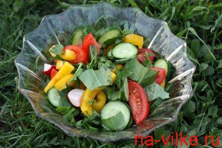 Салат с овощами и весенней зеленью