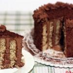 Кусок бисквитного торта с шоколадным кремом