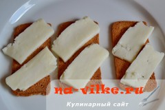 brinza-semga-3