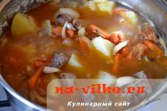 tusheniy-kartofel-so-svininoy-13