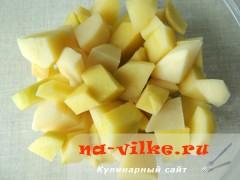 tomatniy-sup-3