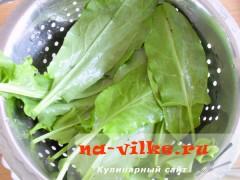 zeleniy-sup-pure-04