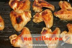 kurinye-krylia-08