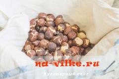 pechenie-ulitka-02