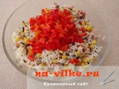 salat-iz-tunca-s-risom-07