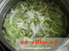 shi-iz-kapusty-04