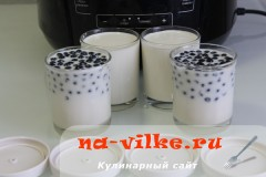 yogurt-chernika-07